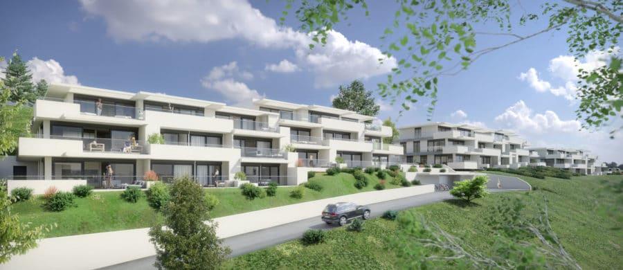 Programme Immobilier 3D Vue d'ensemble